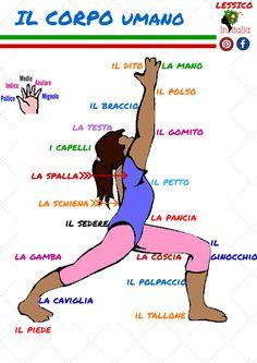 #ilcorpoumano #lessicoitaliano #initalialinguaecultura #initalia