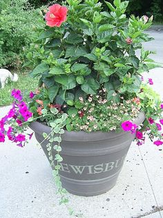 One of our Lewisburg planters