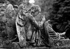 кладбище во Львове