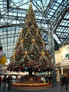 Christmas Tree at Tokyo Disneyland Christmas Scenes, Disney Christmas, Christmas Love, Christmas Photos, Christmas Lights, Christmas Holidays, Japanese Christmas, Holiday Tree, Xmas Tree