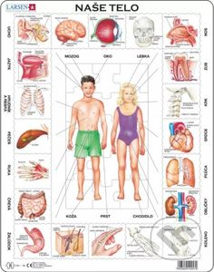 Larsen Puzzles The Body Kids Jigsaw Puzzle - La Petite Taupe, The Human Body, Puzzle Frame, Learn Dutch, Jigsaw Puzzles For Kids, Dutch Language, Human Body Systems, Body Anatomy, Jüngstes Kind