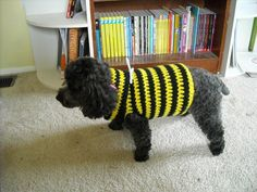 Free Pattern for the A-Line Ruffled Dog Sweater Dress