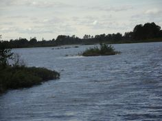 Seney Wildlife Refuge, Sept 2014