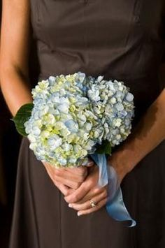 bridesmaids bouquet using 3 hydrangeas and ribbon
