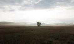 Little Missouri National Grasslands.