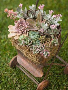 36 Best Cabin Yard Flower Ideas Images On Pinterest Gardens Home