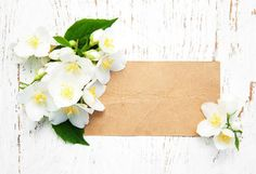 Card with jasmine flowers. Wedding Card Templates. $5.00