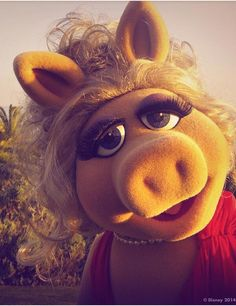 childhood, muppets, and Miss Piggy image Miss Piggy Muppets, Die Muppets, Kermit And Miss Piggy, Kermit The Frog, Jim Henson, Muppets Most Wanted, Mejores Series Tv, My Favorite Color, My Favorite Things