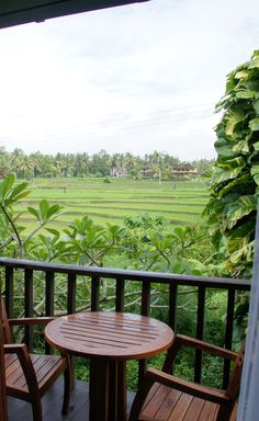Bali, Indonesia - Maya Ubud Resort - The Standard Room I viewed had a balcony with a great view of the Rice Fields (photo Jan. 2012 by Peggy Mooney)