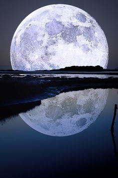 we saw the same moon
