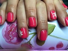 pink gel lac colour with white flower