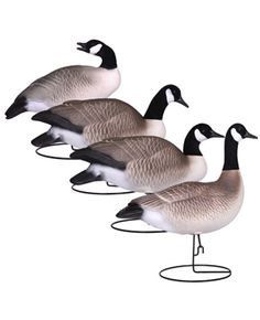 full body Canada Goose' decoys for sale