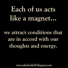 Law of Attraction = like attracts like = birds of a feather flock together.