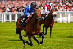Muhaarar (GB) 2012 B.c. (Oasis Dream (GB)-Tahrir (IRE) by Linamix (FR) 1st Greenham S (GB-G3,7fT,Newbury), Commonwealth Cup (GB-G1,6fT,Royal Ascot), July Cup (GB-G1,6fT,Newmarket) (photo: Reuters/Eddie Keogh), British Champions Sprint S (GB-G1,6fT,Ascot)
