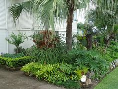 Great ideas for Florida gardens.