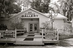 Clyde Butcher: Photographer of the Everglades