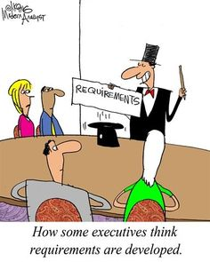 Humor - Cartoon: Executive Perspective: Requirements Development