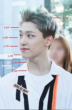 Height chart for #dino