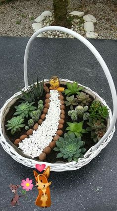 Easy And Cheap Ways To Make Succulent Garden In Your Backyard 59 The market i. Easy And Cheap Ways Succulent Terrarium, Planting Succulents, Terrarium Ideas, Succulent Arrangements, Landscaping Tools, Pot Jardin, Container Gardening Vegetables, Vegetable Garden, Organic Gardening Tips