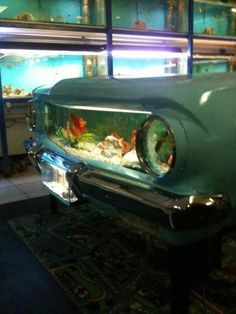 car fish tank! idea.. use my fish tanks on SIDE.  add vignette.  could cover with paper