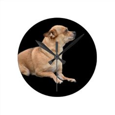 #Brown Chihuahua Puppy Dog Pet Photograph Round Clock - #chihuahua #puppy #dog #dogs #pet #pets #cute