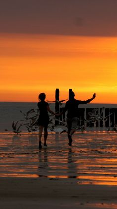 beach, promenade, bridge, sea, sunset, waves, children, birds Htc One, Samsung Galaxy S4, Sony Xperia, Wave Rock, Cutest Dog Ever, Sea Waves, Beautiful Sunrise, Hd Backgrounds, Romantic Couples