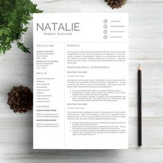 Infographic Resume Example for Executive   Resume Examples     Professional Resume Template CV by Indograph on Creative Market