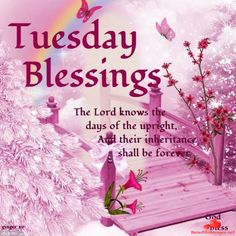Tuesday Blessings, The Lord Knows The Days Of The Upright And Their Inheritance Shall Be Forever tuesday tuesday quotes tuesday blessings tuesday pictures tuesday images Tuesday Quotes Good Morning, Morning Greetings Quotes, Good Morning Good Night, Morning Messages, Tuesday Images, Tuesday Pictures, Tuesday Greetings, Happy Tuesday, Psalms Quotes
