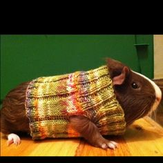 My knitting friend is thinking of knitting one of these...I don't know whether to laugh or smile&nod!