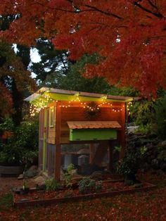 I like the lights and the colors on this chicken coop :)