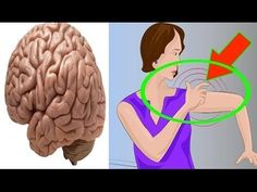 One Month Before Stroke Your Body Will Send You These Warning Signs Don't Ignore Them Life well live Yoga For Arthritis, Rheumatoid Arthritis Symptoms, Types Of Arthritis, Arthritis Remedies, Reactive Arthritis, 1 Monat, Diabetes Information, Types Of Diabetes, Health