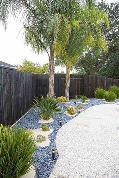bordure jardin moderne jardin sec moderne cactus galets gris