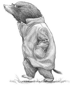 'The Wind in the Willows' by Kenneth Grahame - Mole heads to 'The Wild Wood' in chapter Autumn Illustration, Graphic Illustration, Pencil Drawings, Art Drawings, Serpentina, Drawing Reference, Illustrators, Fantasy Art, Fairy Tales