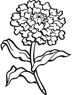 Free printable Carnation Flower coloring pages. Select one of 1000 printable Coloring pages of the category Flowers. Mothers Day Coloring Pages, Sunday School Coloring Pages, Heart Coloring Pages, Truck Coloring Pages, Online Coloring Pages, Flower Coloring Pages, Coloring Pages To Print, Free Printable Coloring Pages, Coloring Pages For Kids