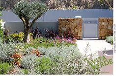 A #garden with Mediterranean plants