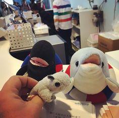 Momo-chan haciendo amigos en el acuario! #momonga #ShortyEnJapon #momo-chan  #newfriends