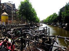 ride bikes in amsterdam