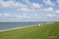 Impressionen von der eingedeichten Halbinsel Nordstrand in Nordfriesland // Foto: MeerART North Sea, Central Europe, Strand, Golf Courses, Germany, Beautiful, Beach, Water, Travel