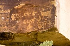 See Ancient Rock Art Petroglyphs Near Yellowstone Survival Project, Important Things In Life, Science And Nature, Prehistoric, Go Shopping, Rock Art, Photo Galleries, Castle, Canyon Utah
