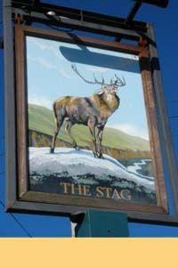 The Stag - Flackwell Heath good summer beer garden