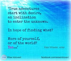 true adventures start with desire quote used in guest post by Wise Introvert, www.wiseintrovert.com