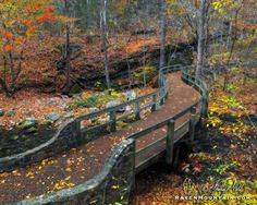 Sinuous by Raven Mountain Images (Blanchard Springs)