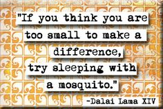 If you think you are too small to make a difference, try sleeping with a mosquito. - Dalai Lama XIV (There are plenty of mosquitos here in the summer in Winnipeg) The Words, More Than Words, Words Quotes, Me Quotes, Funny Quotes, Great Quotes, Quotes To Live By, Inspirational Quotes, Change Quotes