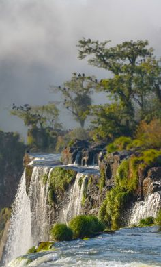 Véritable écrin de verdure et d'eau : les chutes d'Iguazu ! #iguazu #argentine #brézil Waterfall Wallpaper, Scenery Wallpaper, Chinese Landscape, Fantasy Landscape, Water Element, Seen, Nature Photos, Cool Places To Visit, Beautiful Landscapes
