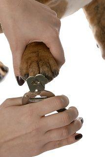 Health- Fear of Nail Cutting