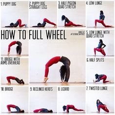 Yoga flow of Full wheel pose . #Repost @miz.liz How to Full Wheel . . . . Made this a whileeee back and just found it so I wanted to share with you guys Happy Tutorial Thursdays!! For backbends thoroughly warm up wrists shoulders hip flexors quads... basically were stretching the front body and compressing/strengthening the backbody - so here are some exercises to do to full wheel pose (recommended at least 10-20 minutes warm up including all the abovementioned body parts ) - . . Hold each…