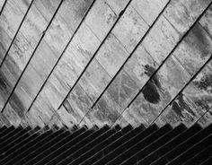 """Check out new work on my @Behance portfolio: """"Black and White"""" http://on.be.net/GShBUx"""