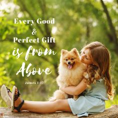 Our pets bless our families--How can we bless our pets? Read Ramona Vincent's blog on our sweet furry friends!