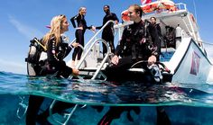 Refresher videos on diving - SSI Scuba Schools International