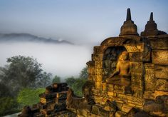 Buddha in the jungle highlands, Borobudur Temple, Magelang, Central Java, Indonesia.